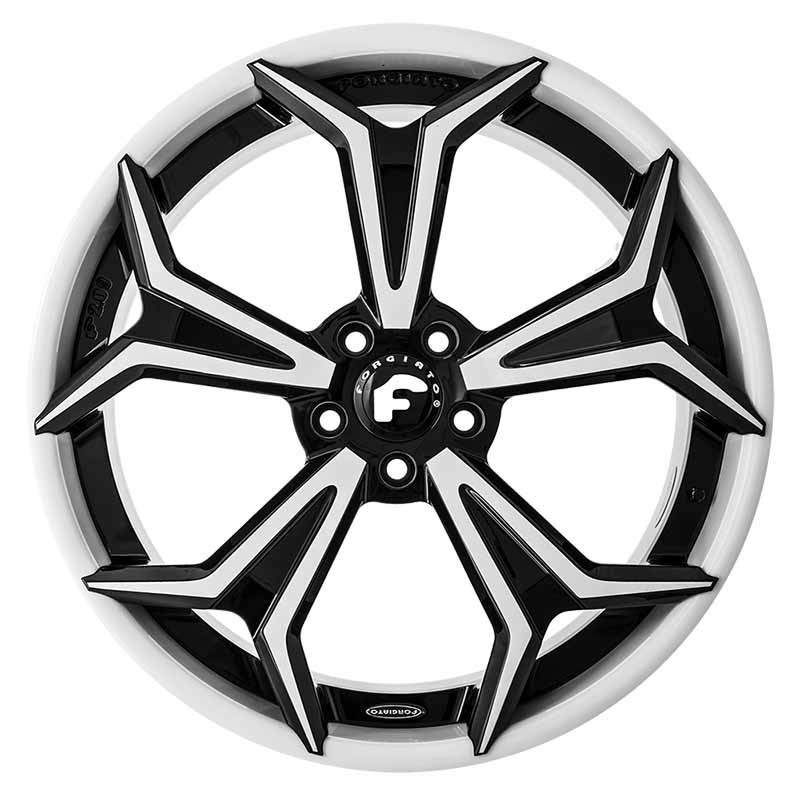 images-products-1-6676-232978964-forged-wheel-forgiato2-f209-ecx-12.jpg