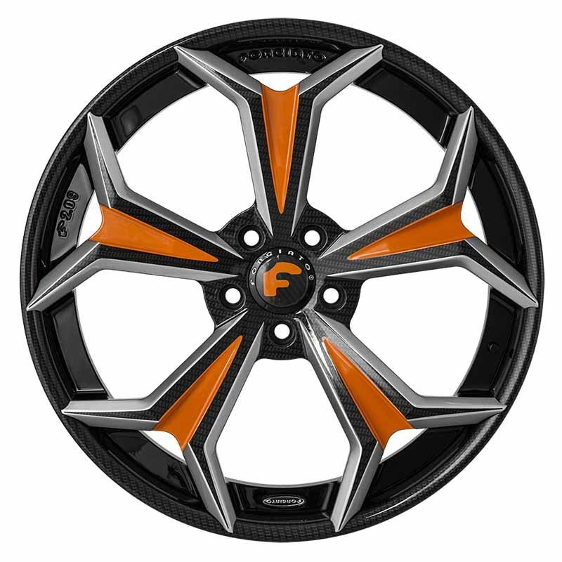 images-products-1-6684-232978972-forged-wheel-forgiato2-f209-ecx-16.jpg