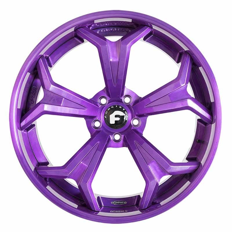 images-products-1-6690-232978978-forged-wheel-forgiato2-f209-ecx-18.jpg