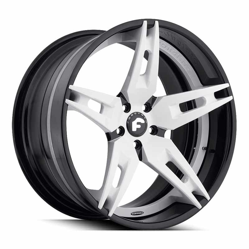 images-products-1-6747-232979035-forged-wheel-forgiato2-f210-ecl-9.jpg