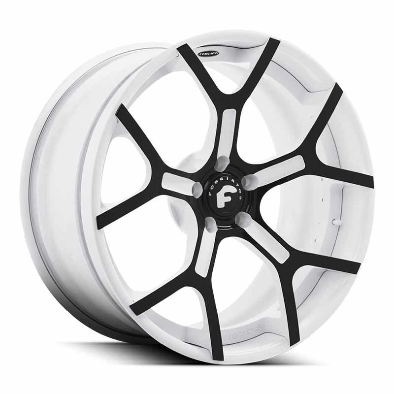 images-products-1-7544-232979832-forged-wheel-forgiato2-gtr-ecl-2.jpg